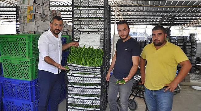 Katar'ın Sebzesi Menderes'ten Gidecek