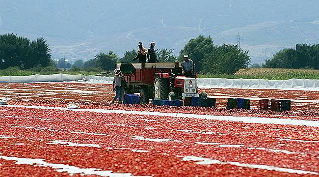 Çiftçiye Her Yıl 62 Milyon Lira Ek Gelir