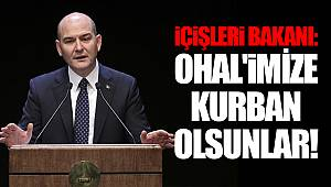 İçişleri Bakanı: OHAL'imize kurban olsunlar!