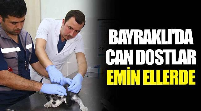 BAYRAKLI'DA CAN DOSTLAR EMİN ELLERDE