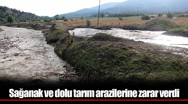 sağanak ve dolu tarım arazilerine zarar verdi