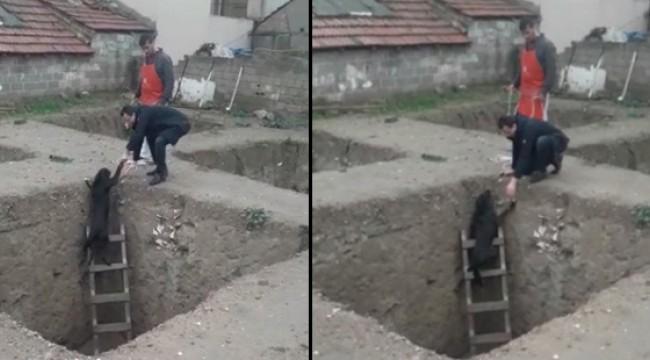 İnşaat çukuruna düşen köpeğe esnaf elini uzattı