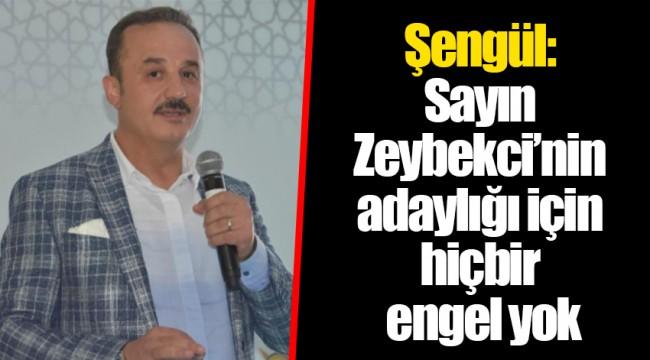 Şengül: Sayın Zeybekci'nin adaylığı için hiçbir engel yok