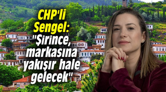 CHP'li Sengel:
