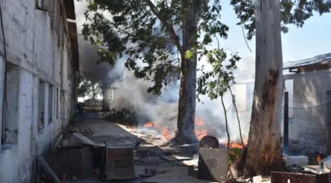 İzmir'de boş arazide çıkan yangın korkuttu