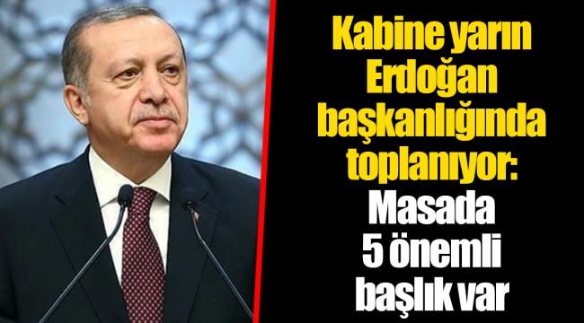 Kabine yarın Erdoğan başkanlığında toplanıyor: Masada 5 önemli başlık var