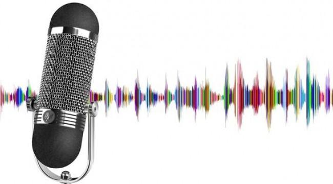 Sesli ticaret 40 milyar dolara koşuyor...