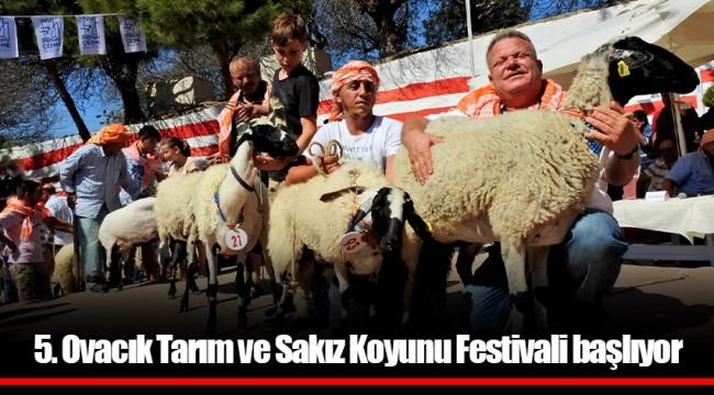 5. Ovacık Tarım ve Sakız Koyunu Festivali başlıyor