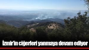 İzmir'in ciğerleri yanmaya devam ediyor; 770 Futbol sahası alan etkilendi!