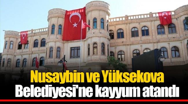 Nusaybin ve Yüksekova Belediyesi'ne kayyum atandı