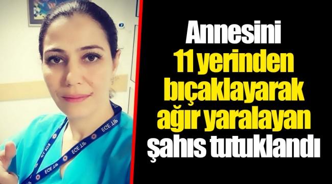 Annesini 11 yerinden bıçaklayarak ağır yaralayan şahıs tutuklandı