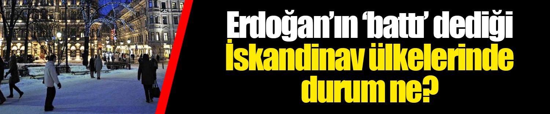 Erdoğan'ın 'battı' dediği İskandinav ülkelerinde durum ne?
