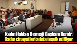 Kadın Hakları Derneği Başkanı Demir:  Kadın cinayetleri adeta teşvik ediliyor