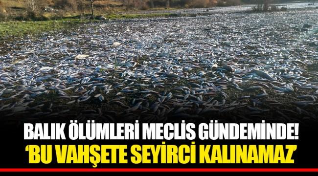 BALIK ÖLÜMLERİ MECLİS GÜNDEMİNDE! 'BU VAHŞETE SEYİRCİ KALINAMAZ'
