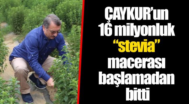 """ÇAYKUR'un 16 milyonluk """"stevia"""" macerası başlamadan bitti"""