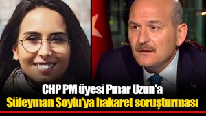 CHP PM üyesi Pınar Uzun'a Süleyman Soylu'ya hakaret soruşturması