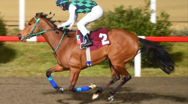 TJK'dan son dakika at yarışı kararı! Kuponlar nasıl yatırılacak?