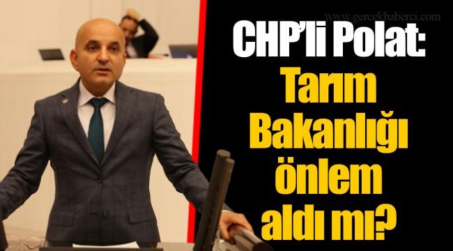CHP'li Polat: Tarım Bakanlığı önlem aldı mı?