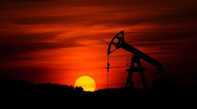 OPEC Başkanından petrolün varil fiyatının 40 dolara yükselmesi beklentisi