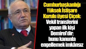 Cumhurbaşkanlığı Yüksek İstişare Kurulu üyesi Çiçek: Vekil transferini yapan ilk kişi Demirel'dir; bunu kanunla engellemek imkânsız