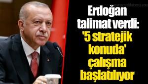 Erdoğan talimat verdi: '5 stratejik konuda' çalışma başlatılıyor