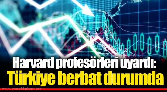 Harvard profesörleri uyardı: Türkiye berbat durumda