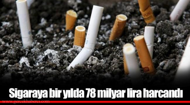 Sigaraya bir yılda 78 milyar lira harcandı