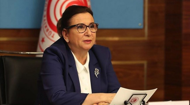 Ticaret Bakanı Pekcan: Esnaf ve sanatkarımız kaldığı yerden devam edecek