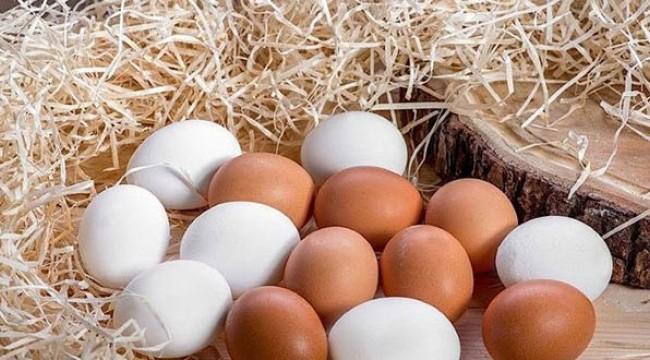 Yumurta tüketimi 'karantina' etkisiyle arttı