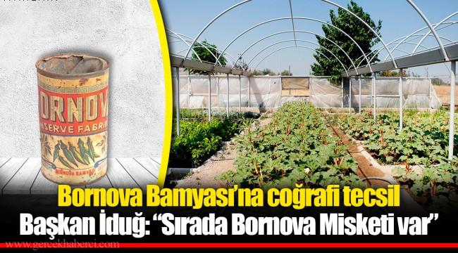 Bornova Bamyası'na coğrafi tecsil