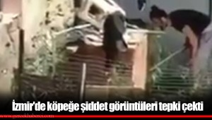 İzmir'de köpeğe şiddet görüntüleri tepki çekti