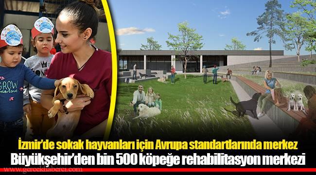 İzmir'de sokak hayvanları için Avrupa standartlarında merkez