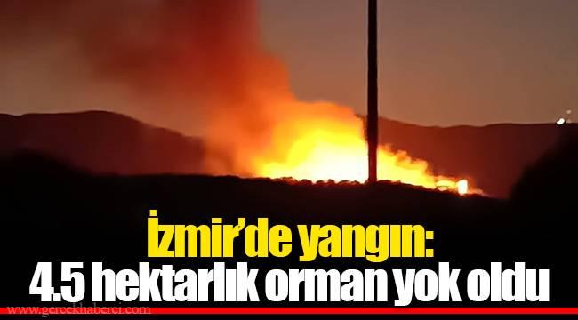 İzmir'de yangın: 4.5 hektarlık orman yok oldu