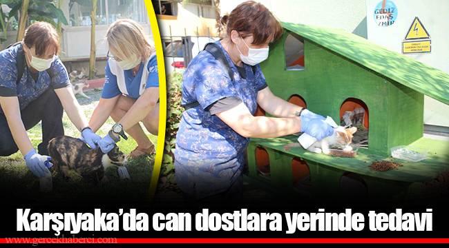 Karşıyaka'da can dostlara yerinde tedavi