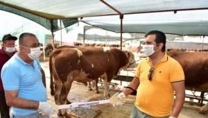 Kurban pazarlarına özel 'Pazarlık kiti'