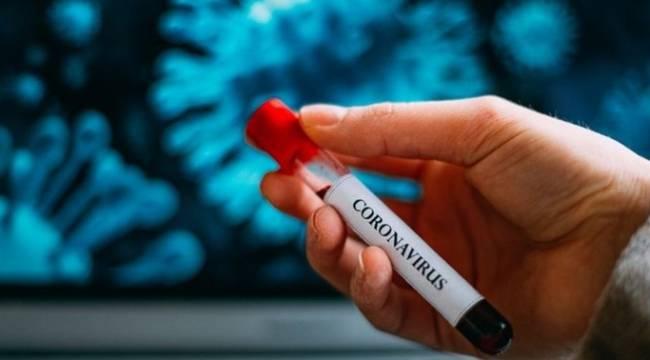Türkiye'de koronavirüs nedeniyle 19 kişi daha hayatını kaybetti