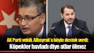 AK Parti vekili, Albayrak'a böyle destek verdi: Köpekler havladı diye atlar ölmez