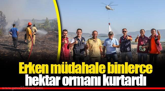 Erken müdahale binlerce hektar ormanı kurtardı