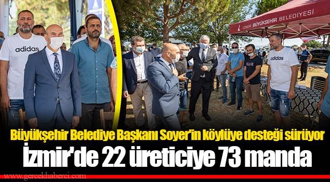 İzmir'de 22 üreticiye 73 manda