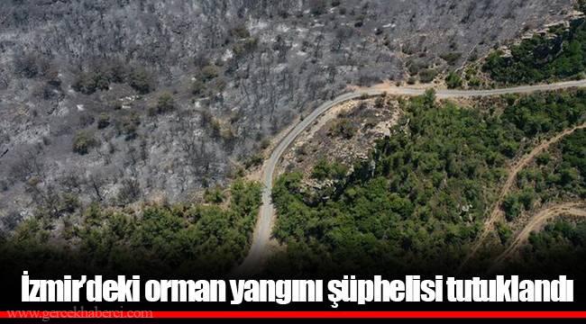 İzmir'deki orman yangını şüphelisi tutuklandı