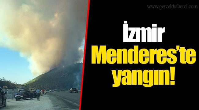 İzmir Menderes'te yangın!