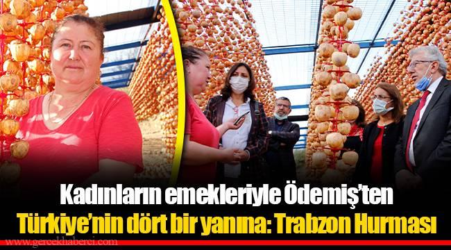 Kadınların emekleriyle Ödemiş'ten Türkiye'nin dört bir yanına: Trabzon Hurması
