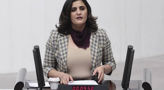 """HDP'li Taşdemir'den Bakan Soylu'ya """"Gara"""" tepkisi: Ordunun bile girmekte zorlandığı bölgeye ne zaman gittim?"""