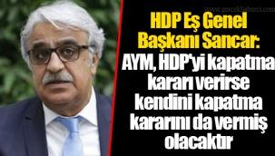 HDP Eş Genel Başkanı Sancar: AYM, HDP'yi kapatma kararı verirse kendini kapatma kararını da vermiş olacaktır