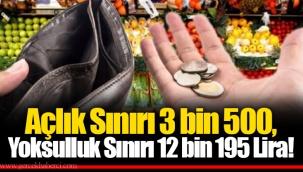 Açlık Sınırı 3 bin 500, Yoksulluk Sınırı 12 bin 195 Lira!