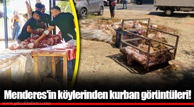 Menderes'in köylerinden kurban görüntüleri!
